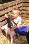 Biggetje knuffelen op de boerderij