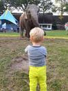 Olifant en Thijmen