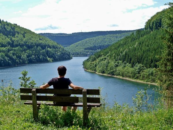 Het prachtige Thüringer Wald