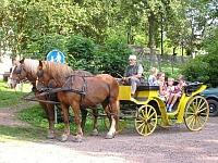 Paardenkoets bij Green Valley Park