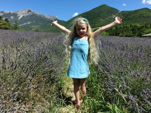 De beroemde Lavendel-velden in de Provence