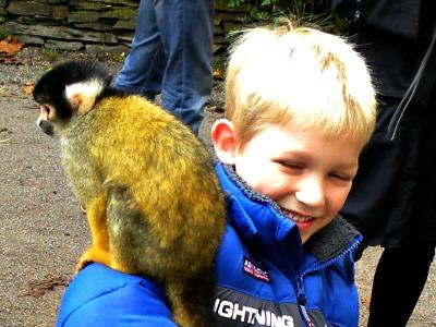 Onze Tycho met een aapje in Apenheul