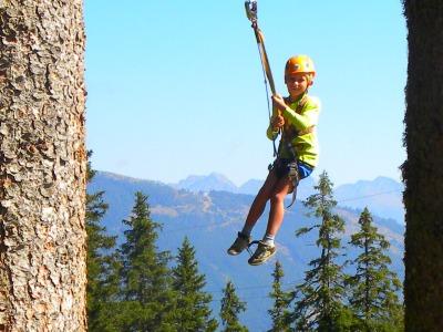 Een reuzenschommel in de Oostenrijkse bergen