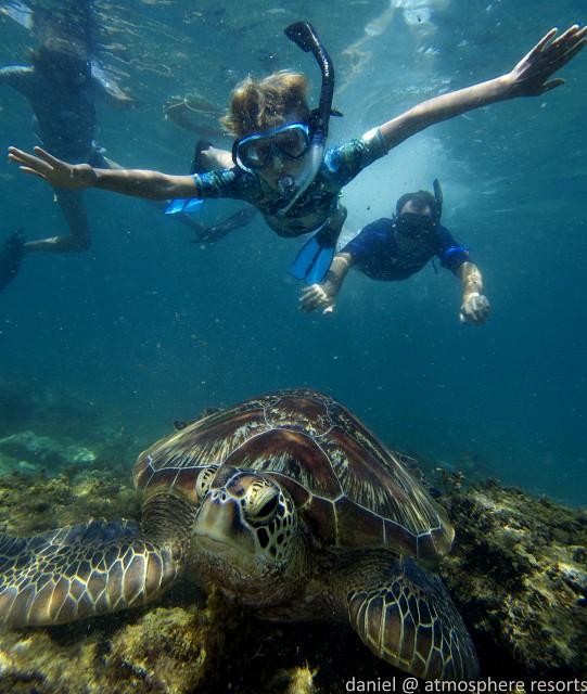 Kinderen zien schildpad met snorkelen