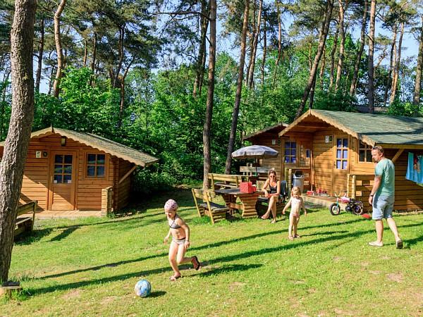 Logeren in een mooie trekkershut op Vakantiepark Diana Heide