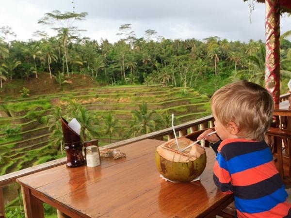 Kindvriendelijk hotel met prachtig uitzicht op de rijstvelden