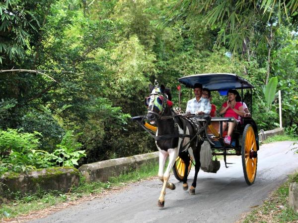 Met een paardenkoetsje rijden in het prachtige Indonesië