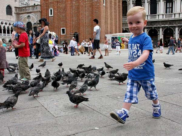 jongentje tussen de duiven op het san marco plein Venetie