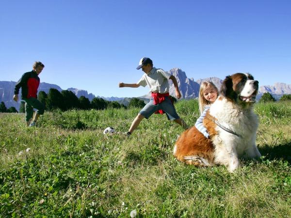 Spelen in de groen Alpenweiden