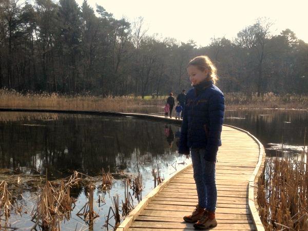 Leuke wandelpaden door de natuur in Belgisch Limburg