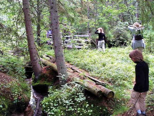 Heerlijk in de prachtige Zweedse natuur
