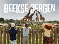 Bij vakantiepark Beekse Bergen krijg je waar voor je geld