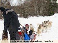 Tocht met huskyslee in Zweden