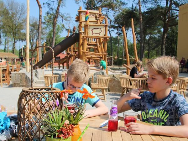 terras met speeltuin bij Safari Resort Beekse Bergen