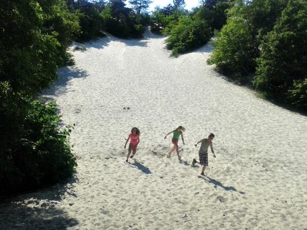 Rennen van de Schoorlse duinen in Noord Holland