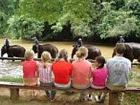 Groepsreis met kinderen in Thailand