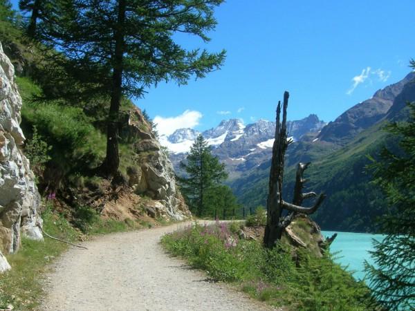 Prachtige landschappen aan de voeten van de bergen in Piemonte