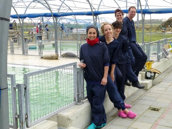 Medewerkers bij de zeehondencrèche