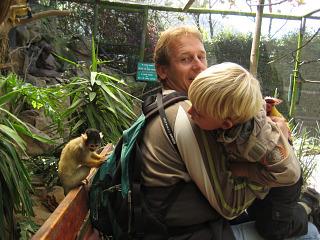 Tamme aapjes bij World of Birds